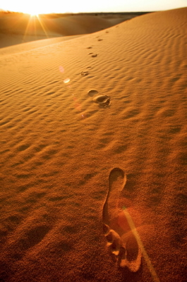 Shaez Fiandar – Poesia di un pellegrino senza nome