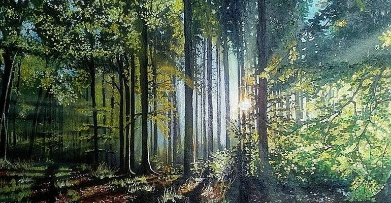 """""""Deep forest,"""" by Natalija Eric"""